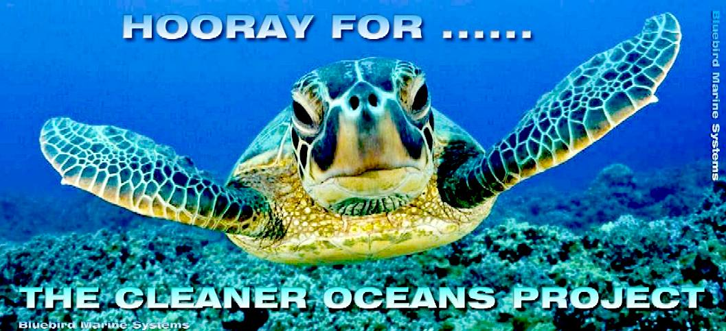 Happy sea turtle just found out about the cleaner oceans project